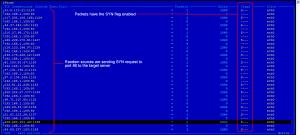 CAPTURED TRAFFIC SYN 300x135 DDoS Análisis de Ataques Coordinados