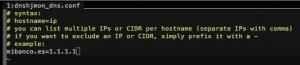 3 300x65 Monitorización para evitar el hijacking DNS