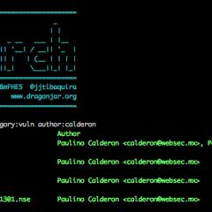 Nueva Versión del NSEarch (Nmap Script Engine Search)