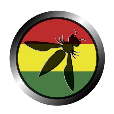 Registro Capitulo Bolivia